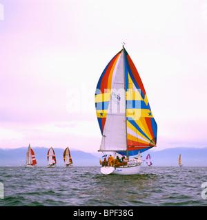 Bateaux à voile Voile en course / Régate avec Spinnakers à Howe Sound près de Vancouver, Colombie-Britannique, Colombie Banque D'Images