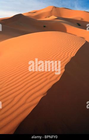 Lumière et Ombre chinoise au lever du soleil à travers les dunes de l'Erg Chebbi près de Merzouga au Maroc Banque D'Images