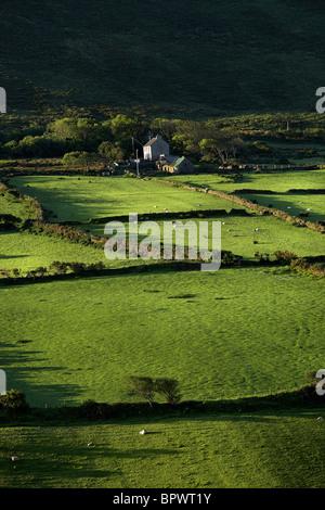 Cottage près de terres agricoles, de Dingle Comté de Kerry Irlande Banque D'Images