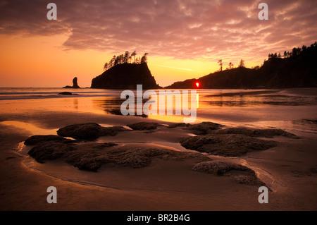Deuxième plage, Olympic National Park, Washington. Banque D'Images