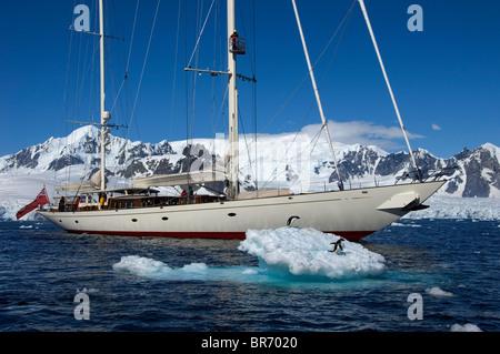 Pingouins reste sur un iceberg comme SY 'Adele', 180 pieds de Hoek Design, moteurs à travers le Canal Lemaire, l'Antarctique, Banque D'Images