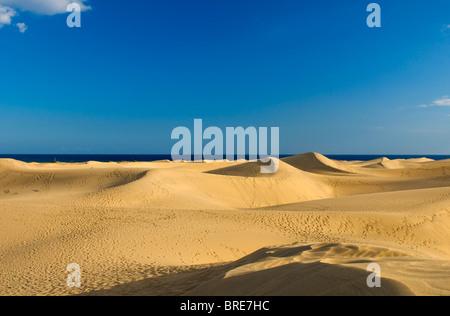 Dunes de sable de Maspalomas, Gran Canaria, Îles Canaries, Espagne Banque D'Images