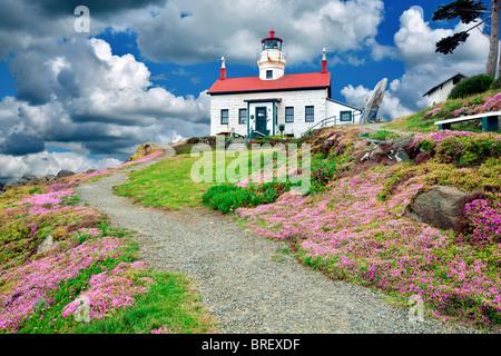 Blooming sédums à Battery Point Lighthouse, Californie Un sky a été ajouté Banque D'Images