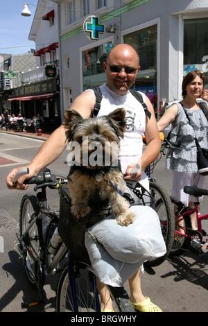 Homme avec chien équitation dans panier à vélo