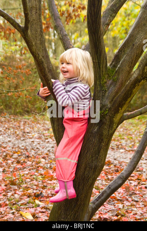 Portrait vertical d'une jeune fille d'être un garçon manqué, grimper et s'asseoir dans un arbre en automne. Banque D'Images