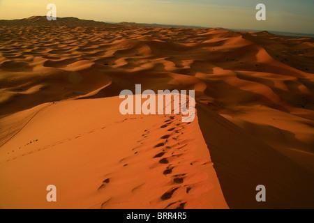 Dune de sable au lever du soleil, près de l'Erg Chebbi Banque D'Images