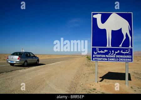 une signalisation routi re en arabe et en anglais afin de les aviser qu 39 ils sont dans une zone. Black Bedroom Furniture Sets. Home Design Ideas