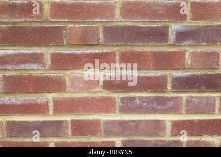 Mur arrière-plan. Il s'agit d'un nouveau mur de briques et les 'white' ar appelé efflorescence. En fait, il est Banque D'Images