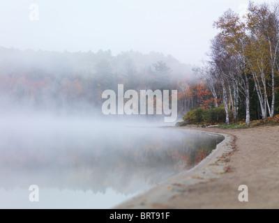 Tôt le matin, la nature de l'automne paysage de brouillard sur le lac Arrowhead. Le parc provincial Arrowhead, Ontario, Banque D'Images
