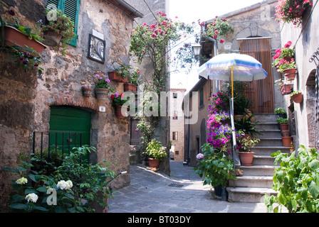 Montelaterone, Province de Grosseto, Toscane, Italie Banque D'Images