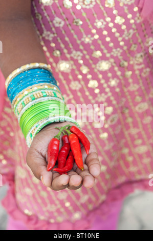 Indian girl holding red chili peppers au creux des mains Banque D'Images