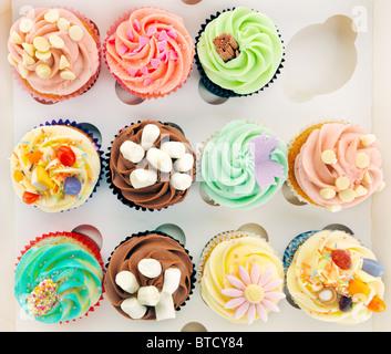 Cupcakes en boîte Banque D'Images