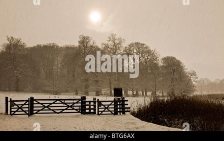 Un soleil laiteux derrière la chute de neige sur la Blickling Hall estate, Norfolk, Angleterre, Royaume-Uni. Banque D'Images