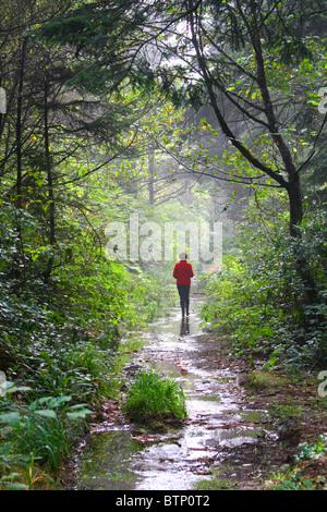 40 461,07596 Femme dans un manteau rouge marche sur un tunnel humide misty comme chemin forestier avec rétroéclairage Banque D'Images
