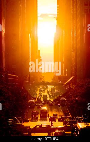 Vue du coucher de la 42e rue en été, la ville de New York. Banque D'Images