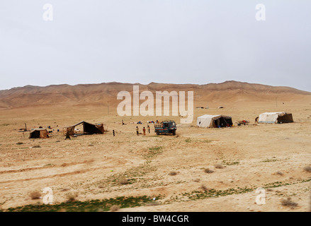 Règlement bédouine dans le désert de Syrie. Banque D'Images