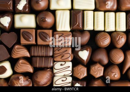 Chocolat pralines divers Banque D'Images