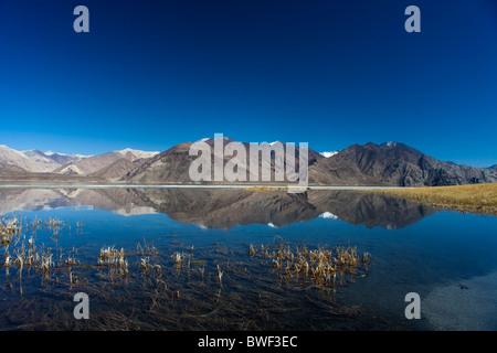 Réflexions d'une chaîne de montagnes sur les eaux placides du lac pangong à haute altitude, le Ladakh. L'Inde. Banque D'Images