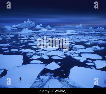 Lonely penguin, hauts-fonds de la glace près du cercle antarctique, Péninsule Antarctique, l'Antarctique Banque D'Images