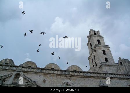 Les oiseaux voleront au-dessus de la Basilique et Monastère de Saint François d'assise (Basilica Menor de San Francisco Banque D'Images