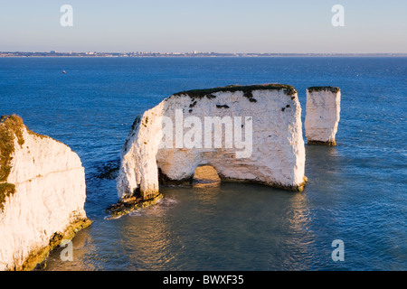 Old Harry Rocks, Studland, Dorset, UK Banque D'Images