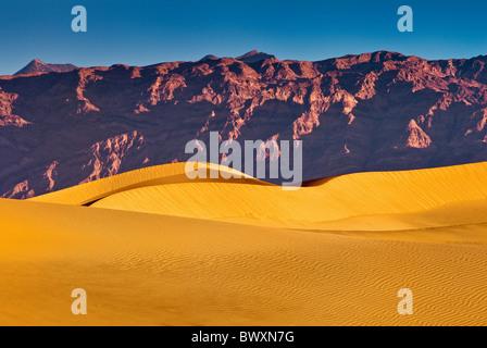 Télévision Mesquite sand dunes, Amargosa Range, sunrise, Death Valley, California, USA