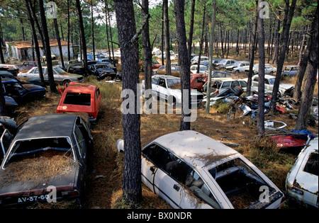 Des voitures abandonnées abandonnés dans une forêt. Banque D'Images