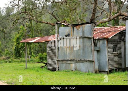 Bush en tôle ondulée hut en Australie Banque D'Images