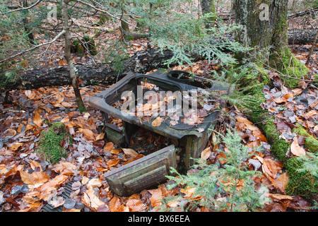 Swift River Logging Railroad - artefacts du Camp de Hornes qui était un camp de bûcherons situé dans les Montagnes Banque D'Images
