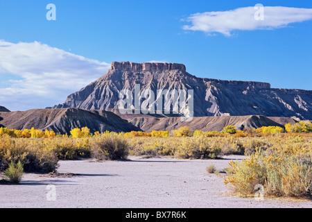 L'Caineville Mesa, Wayne County, Utah, USA Banque D'Images