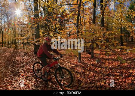 Vélo de montagne équitation à travers les feuilles d'automne, parc des Adirondack, New York State, USA Banque D'Images
