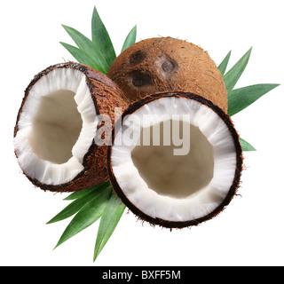 Coco haché avec des feuilles sur fond blanc. Fichier contient un chemins de détourage. Banque D'Images