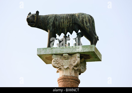 Statue de Romulus et Remus et le loup, Pise, Italie Banque D'Images