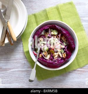 Salade de chou d'hiver, une salade avec du chou rouge, céleri, pomme, raisin sec, noix, les radis et la vinaigrette Banque D'Images