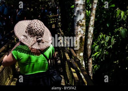 Femme sur la passerelle à Iguazu Falls vu de la province de Misiones, en Argentine. Banque D'Images