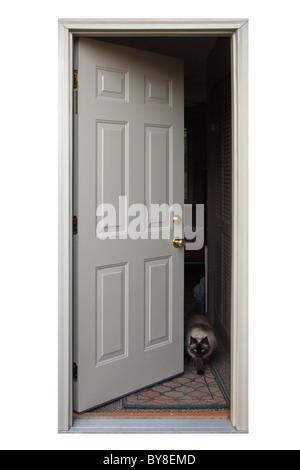 Une porte ouverte avec un chat à la sortie.