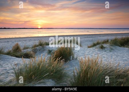 Lumière du soir sur les dunes de sable au chef de l'Est. Une flèche de sable et de galets située à l'entrée de Chichester Banque D'Images