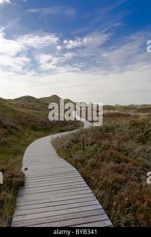 Paysage de dunes près de Nebel, Amrum Island, Mer du Nord, de Frise du Nord, l'Allemagne, de l'Europe Banque D'Images