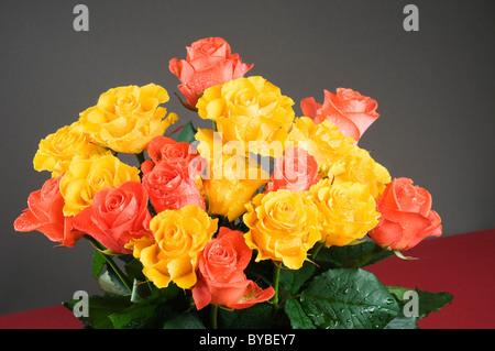 Maison de vacances roses bouquet couleur sur fond gris Banque D'Images
