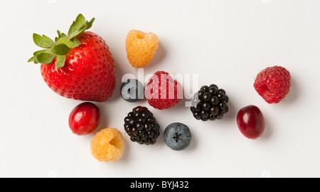 Agriculture - mélange de petits fruits: fraises, framboises rouges et or, mûres, myrtilles, canneberges et sur Banque D'Images