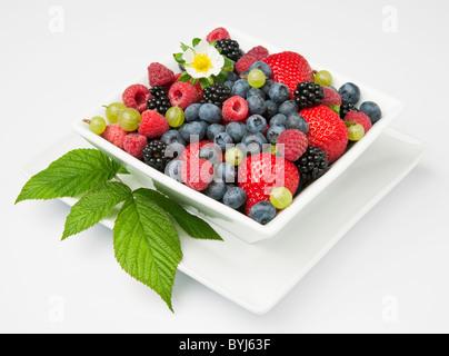 Fraises, framboises rouges, mûres, myrtilles et groseilles dans un bol blanc avec des feuilles et une fleur. Banque D'Images