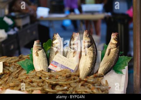 Affichage du poisson au Rialto, marché aux poissons, Venise, Vénétie, Italie Banque D'Images