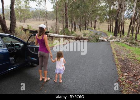 Une femme et de la jeune fille à l'extérieur de leur véhicule sur la route qui est bloqué par un arbre tombé; Gold Banque D'Images