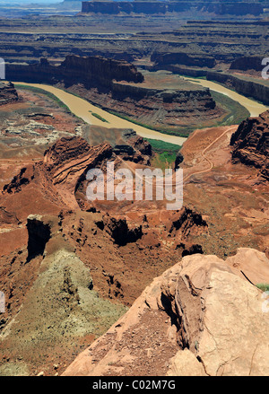 River Bend, Cygne, Canyon, Colorado River, Dead Horse Point State Park, Utah, USA, Amérique Latine Banque D'Images