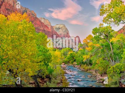 La couleur de l'automne et de Virgin River avec coucher de nuages. Zion National Park, Utah. Banque D'Images