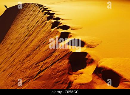 Empreintes sur dune de sable, désert du Sahara, l'Algérie Banque D'Images