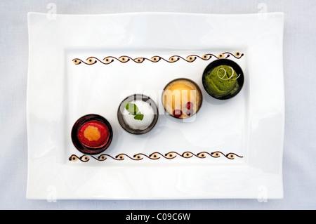 Divers sorbets sur une plaque blanche, Haute Cuisine, Auberge de la Ferme Hueb, Mike Germershausen, Marckolsheim, Alsace, France