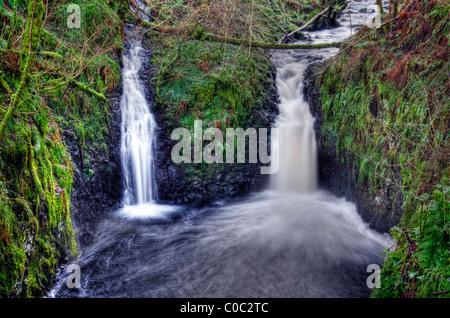 Une section de la cascade de Glenariff Glenariff Forest Park, Les Glens d'Antrim, en Irlande du Nord. Banque D'Images