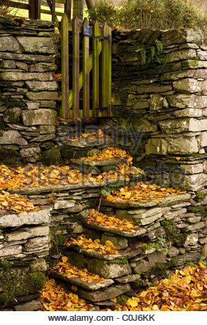 Feuilles mortes sur le vieux mur de pierres sèches étapes menant à la ville, porte en bois fin, Troutbeck, Cumbria, Banque D'Images