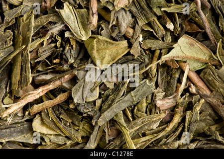 Close up des feuilles de thé Banque D'Images